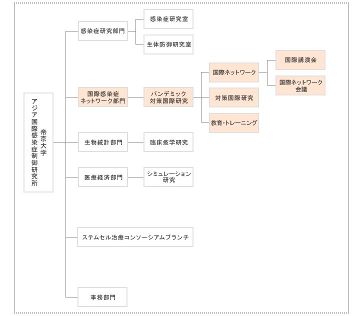 国際感染症ネットワーク部門の組織体制