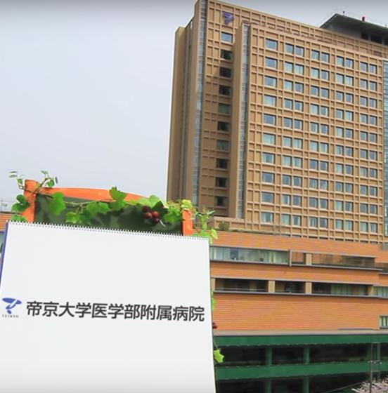 主な海外提携校・提携病院