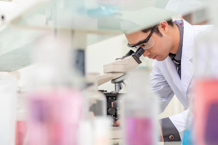 台北医学大学交流プログラム