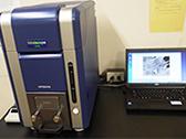 卓上走査型電子顕微鏡