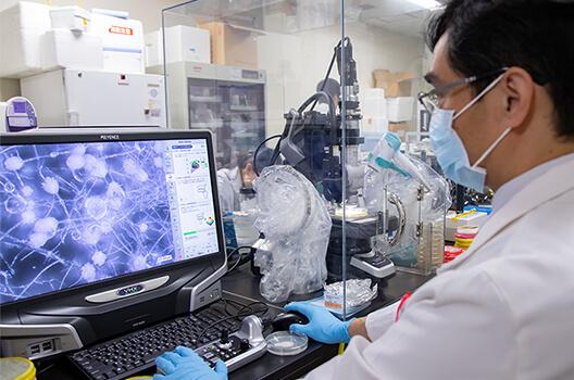 最新のデジタル顕微鏡を駆使して、生きたままの真菌の姿を捉える
