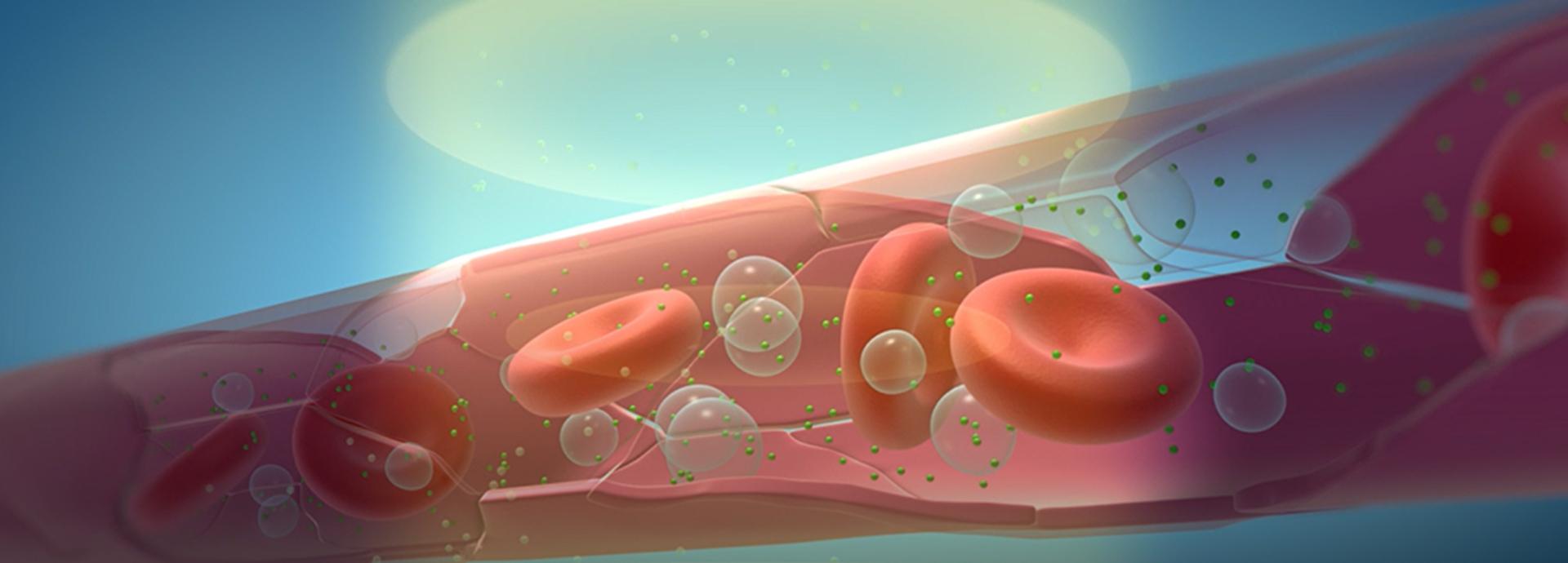 マイクロバブルと超音波により効果的で副作用の少ないDDSを開発