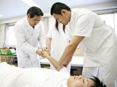 基礎医学実習のイメージ写真
