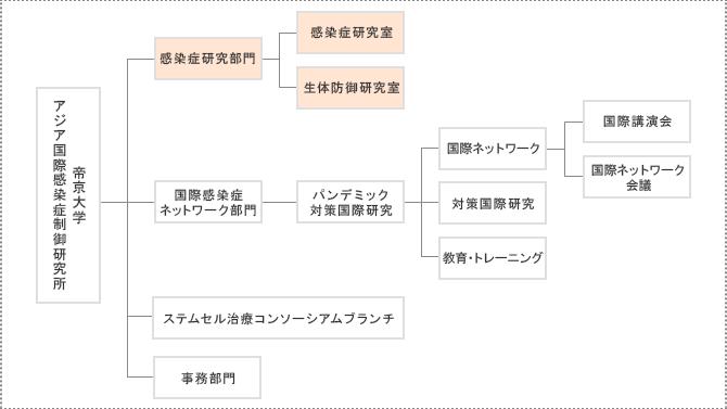 感染症研究部門の組織体制