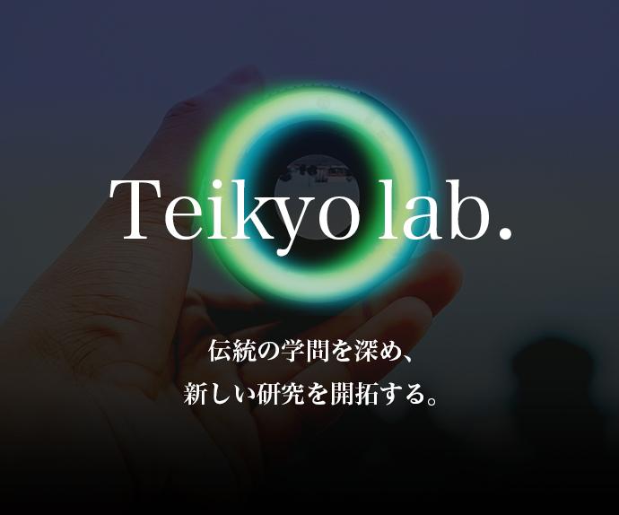 TEIKYO lab.