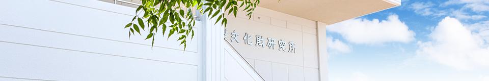image_information
